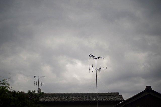 DSC00107m.jpg