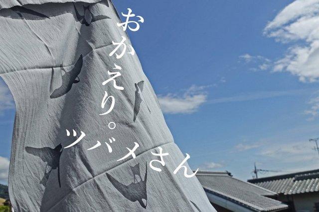 DSC04906mmc.jpg