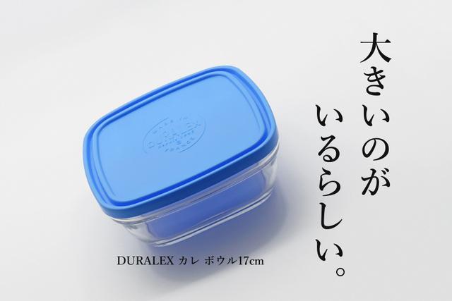 DSC08406mc.jpg