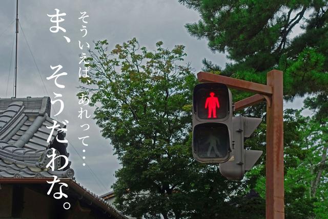 DSC08871mc.jpg
