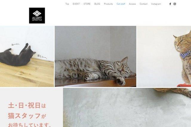 website-c.bmp.jpg